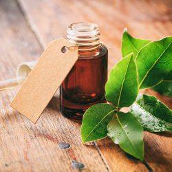 Les huiles essentielles d'Automne