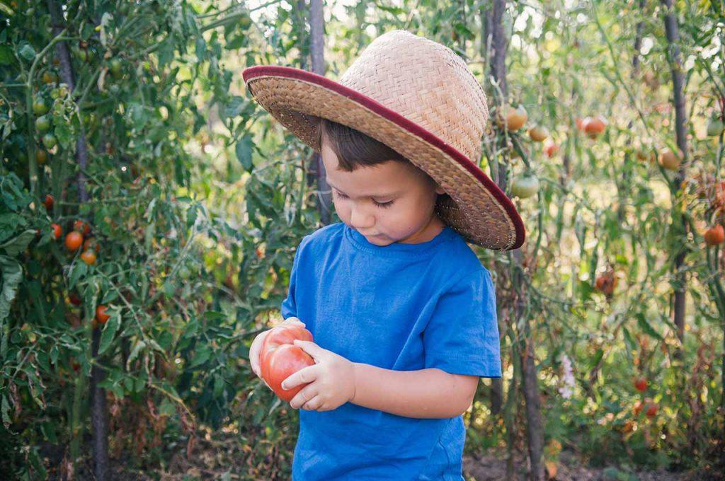 Jeune garçon dans un jardin bio
