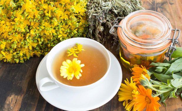 Pourquoi s'intéresser aux plantes médicinales ?